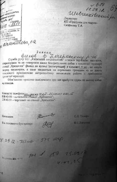 Киевская мерия: как «правильно» истреблять беспризорных собак (документы)