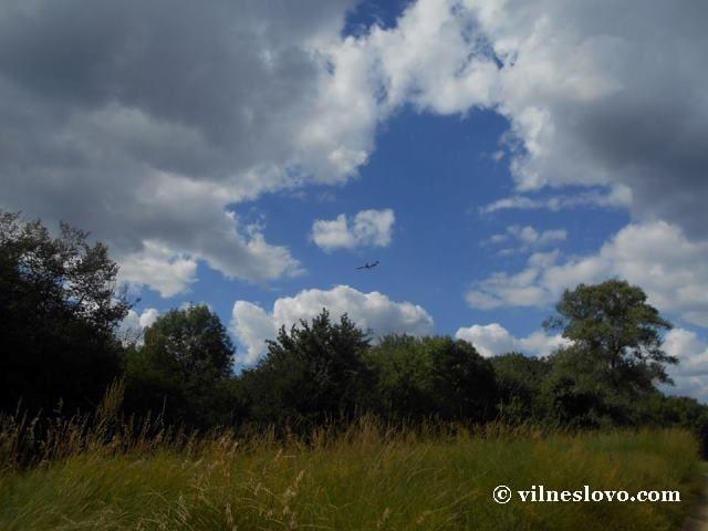 Лиса гора - природний парк