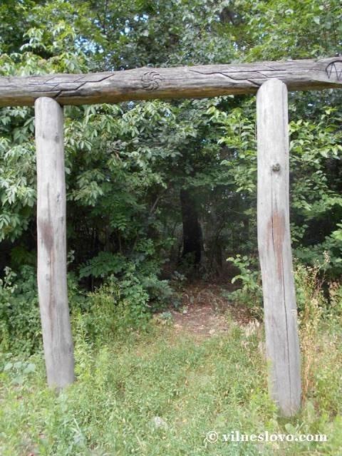 Портал на капищі, Лиса гора