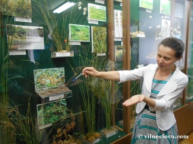 Рослини з Червоної книги