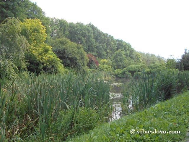 Озеро в парку Софіївка