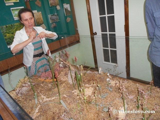 Музей Нетішина зала живої природи