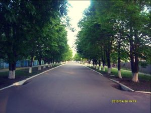 Аллея и улицы Станицы Луганской