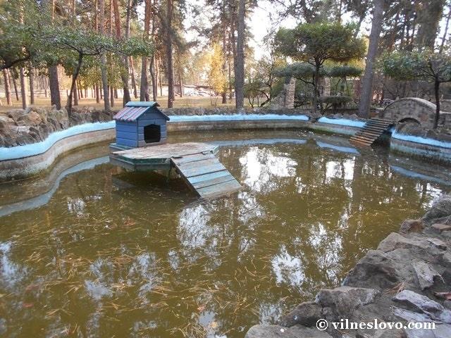 Будиночки для гусей на пруду