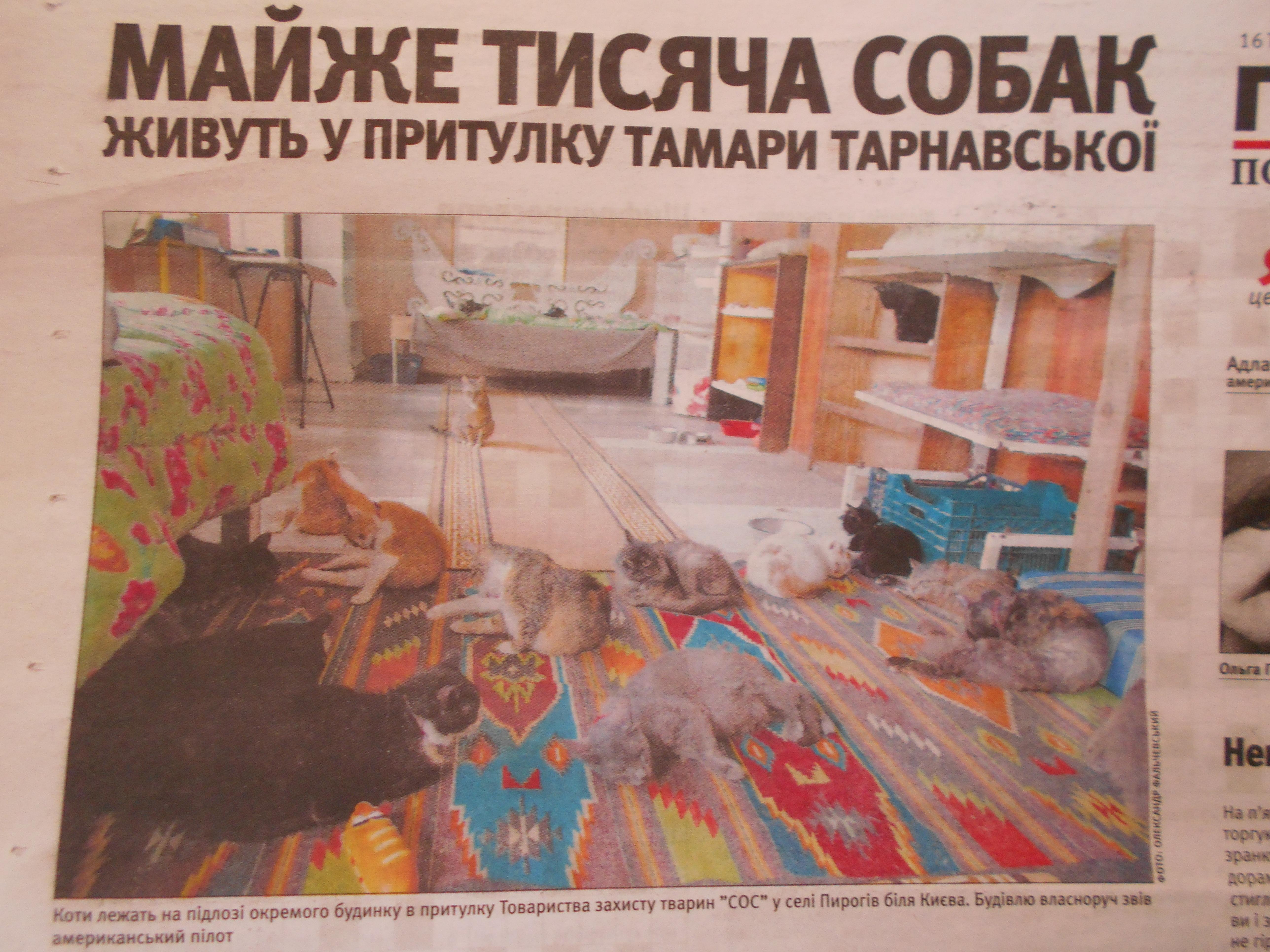 Притулок Тамари Тарнавської