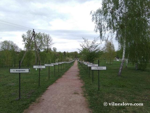 Аллея в Чернобыле: села, которые полностью исчезли из истории