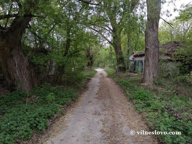 На окраинах Чернобыля