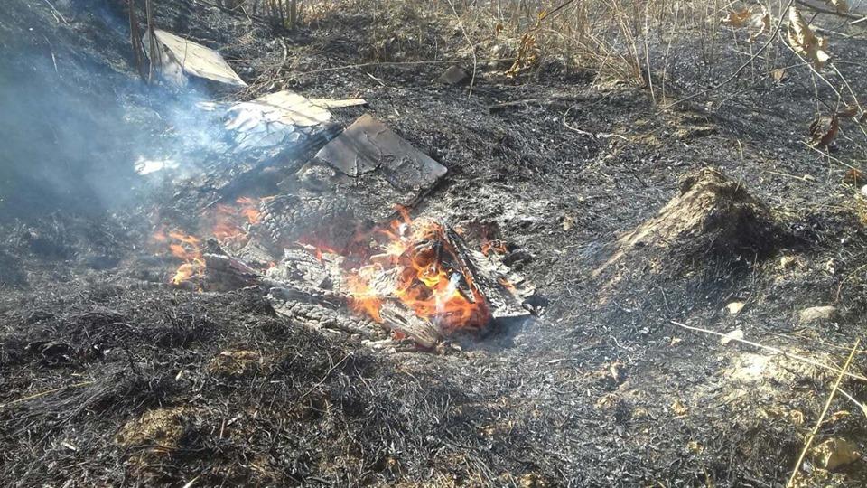 Пожежа у притулку для тварин«SOS»: що сталося насправді