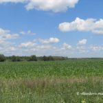 земельна реформа