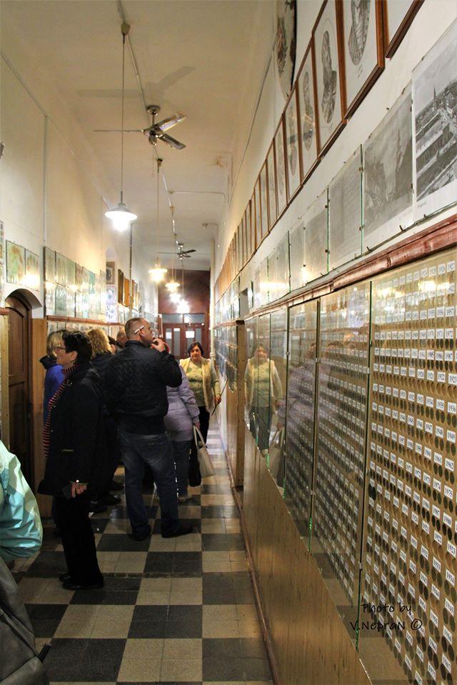 музей Берегівщини