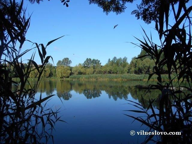 Розстріл рибалок на Житомирщині: причини трагедії