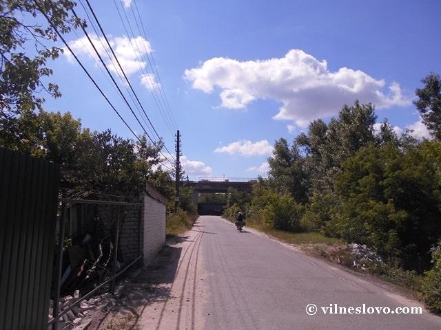 Русанівські сади і Подільсько-Воскресенський міст