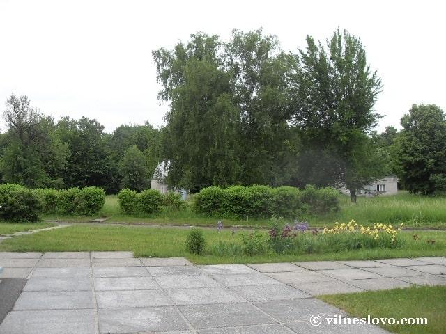 Парк біля ГАО НАН України